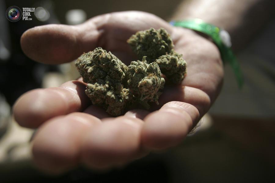 marijuana10 Марихуана в США