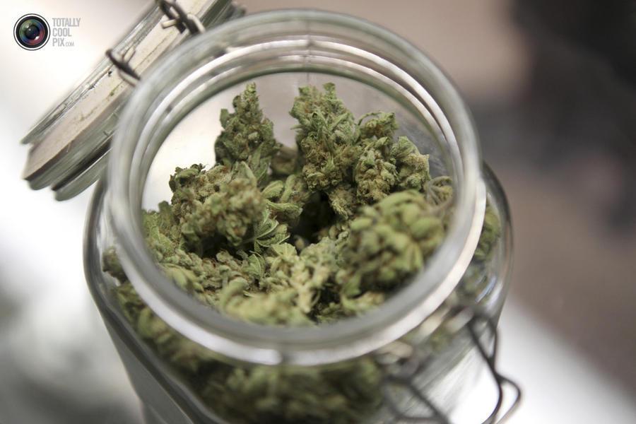 marijuana12 Марихуана в США