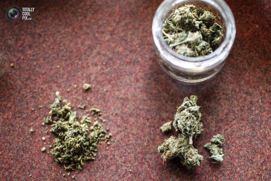 marijuana20 Марихуана в США