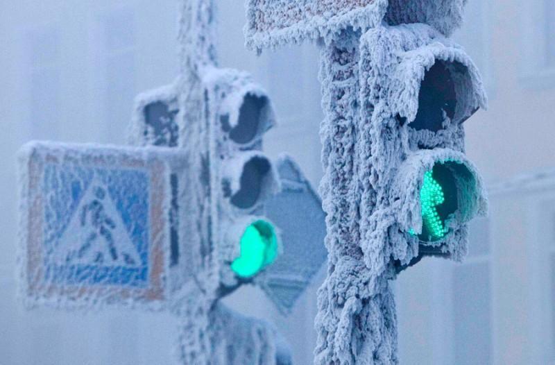 Жизнь на полюсе холода