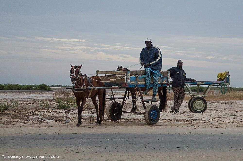 senegal02 Деревня Мар Лодж и Сенегальская школа