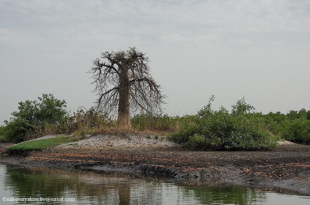 senegal49 Деревня Мар Лодж и Сенегальская школа