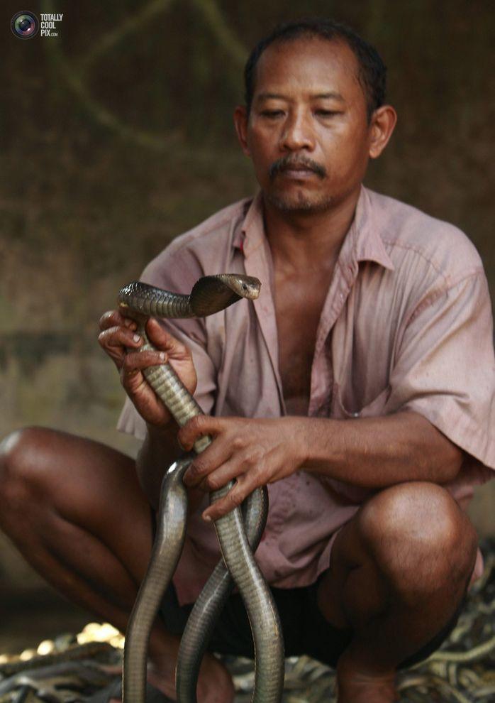 snakeskin04 Как изготавливаются сумки из змеиной кожи