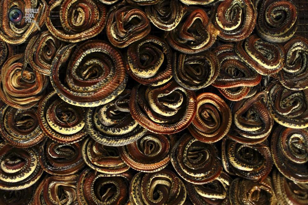 крутой репортаж про то, как змеюги превращаются в сумочки из змеиной кожи. если вы любите змеек, то лучше под кат не...