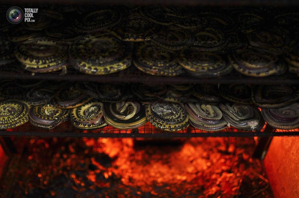 snakeskin11 Как изготавливаются сумки из змеиной кожи
