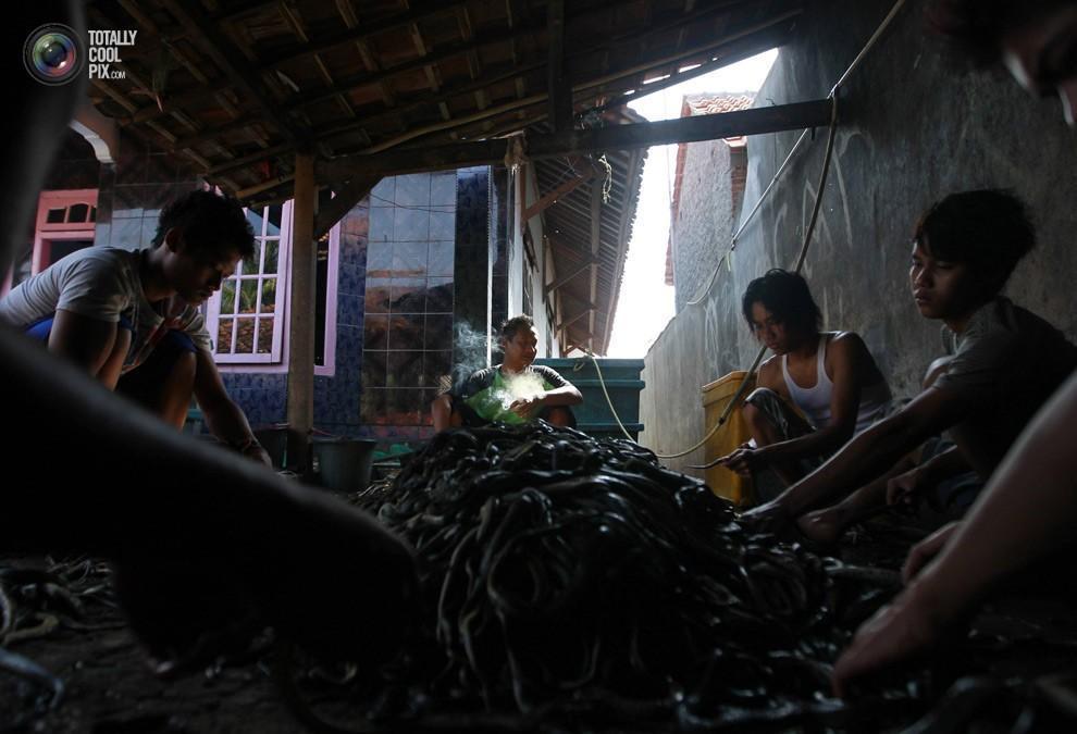 snakeskin12 Как изготавливаются сумки из змеиной кожи