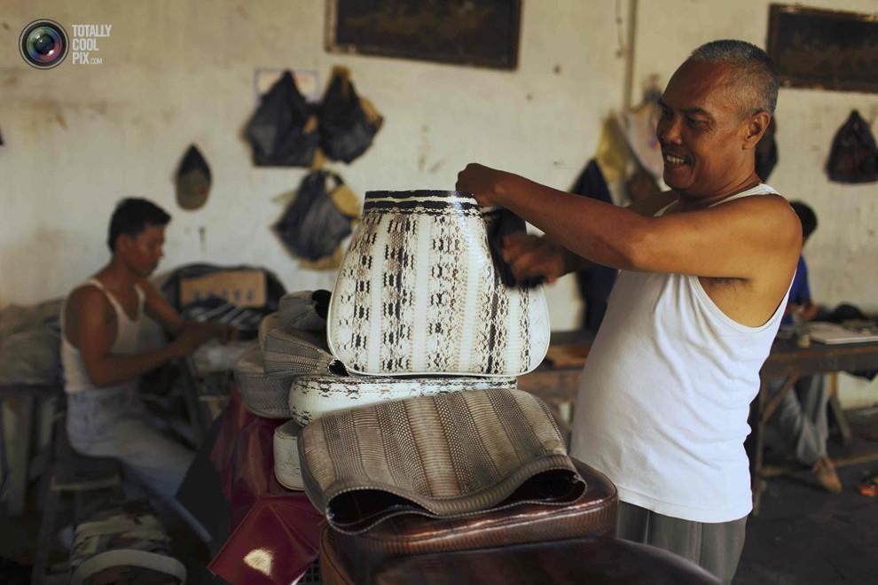 snakeskin21 Как изготавливаются сумки из змеиной кожи