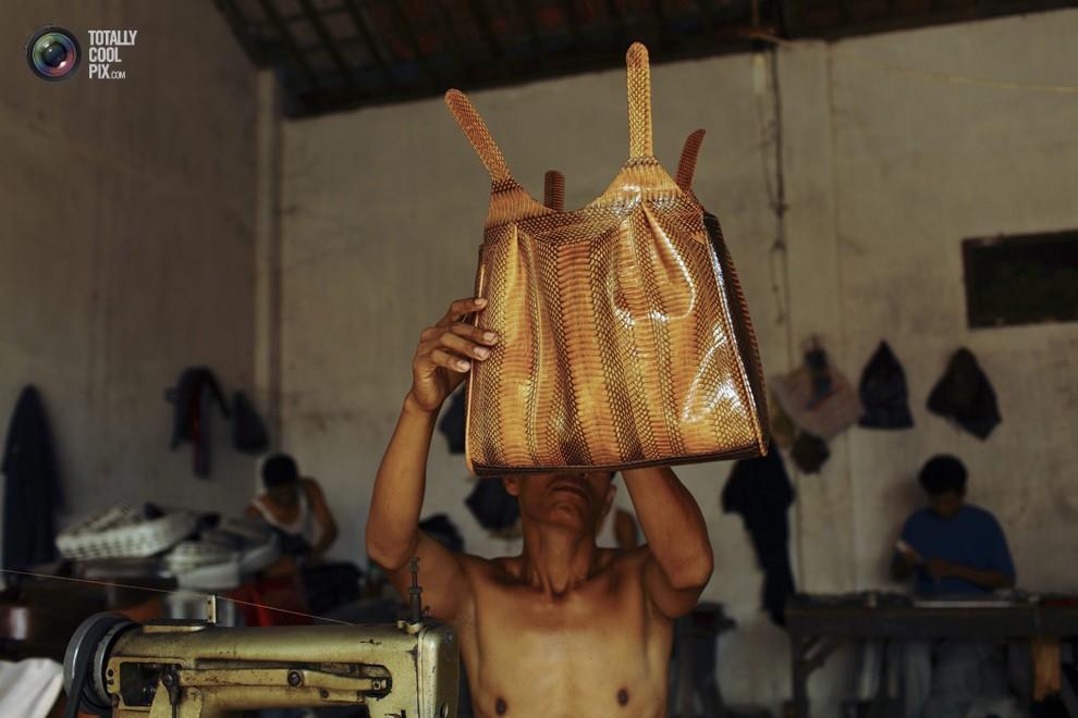 snakeskin22 Как изготавливаются сумки из змеиной кожи