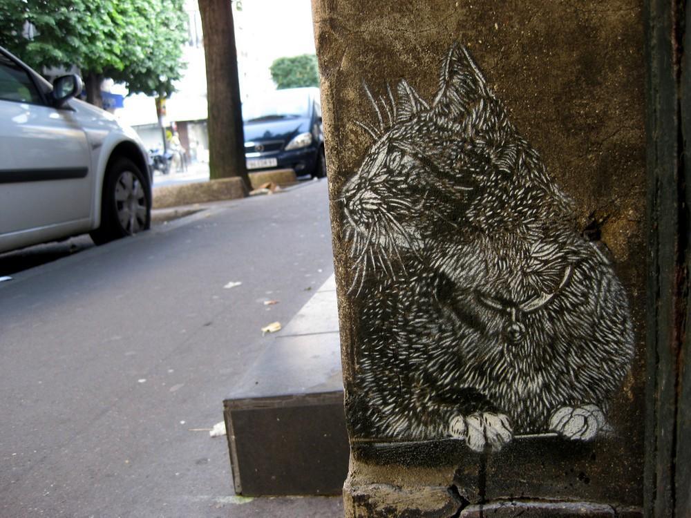 streetart71 amazing street art