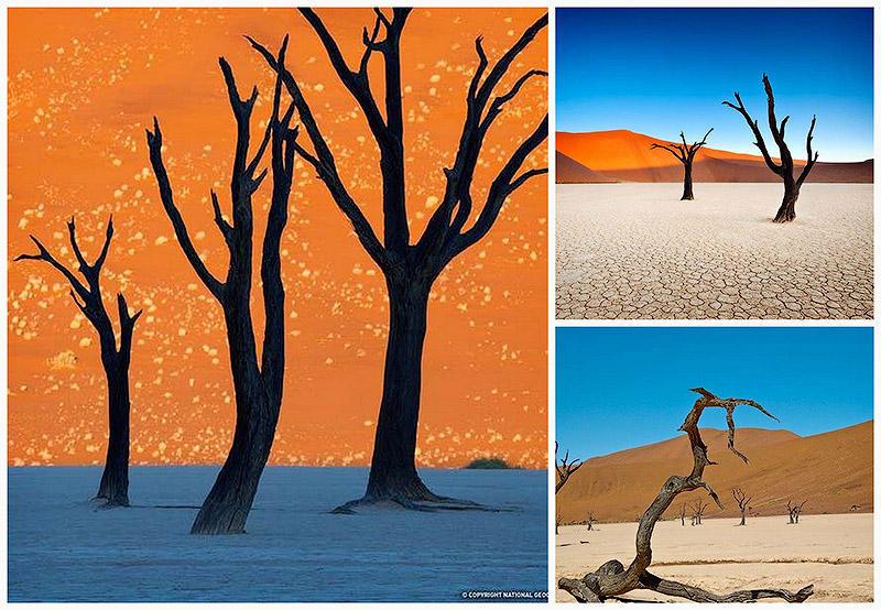 Сюрреалистические пейзажи парка Намиб-Науклуфт
