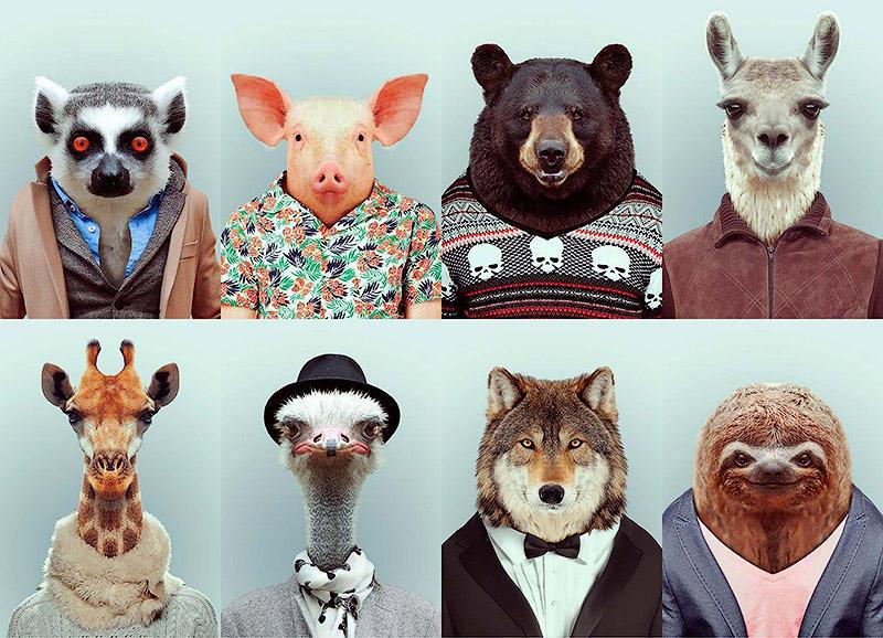 Животинки в одежках