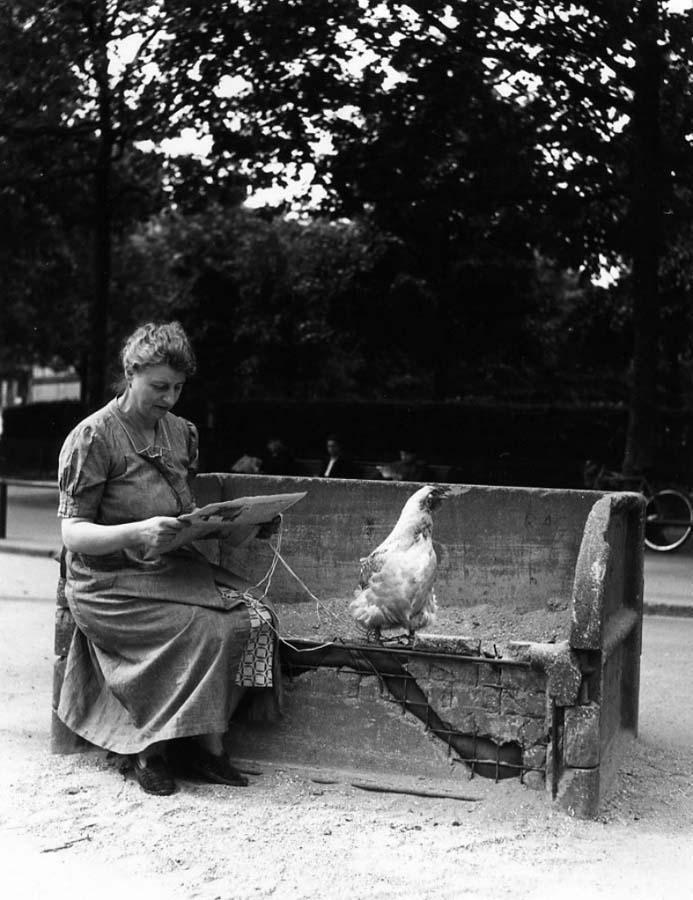 罗伯特DOISNEAU 11罗伯特Doisneau  - 在巴黎的照片的人,谁唱