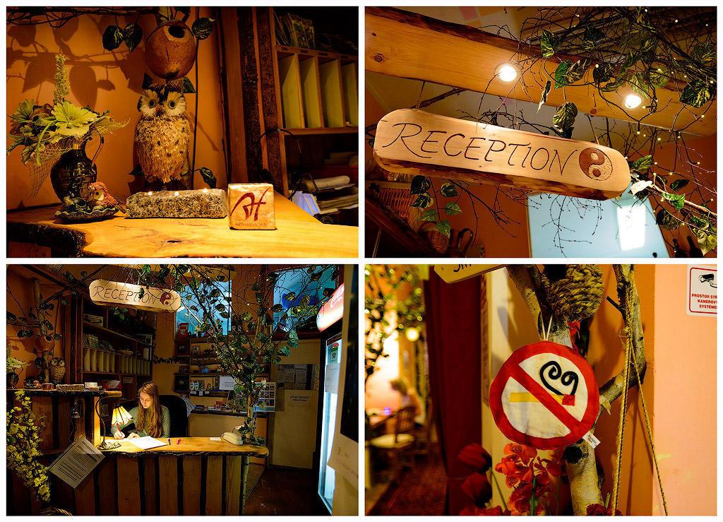 artharmony03 Пятерка необычных отелей Праги