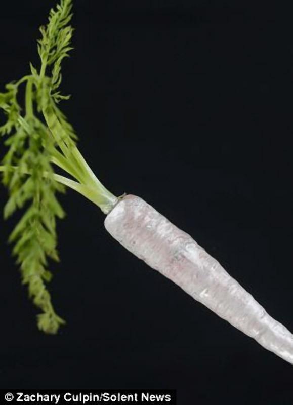 ediblespray07 Первая в мире съедобная краска