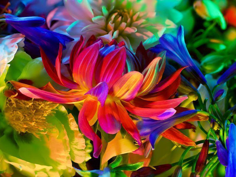 Электрический цветок