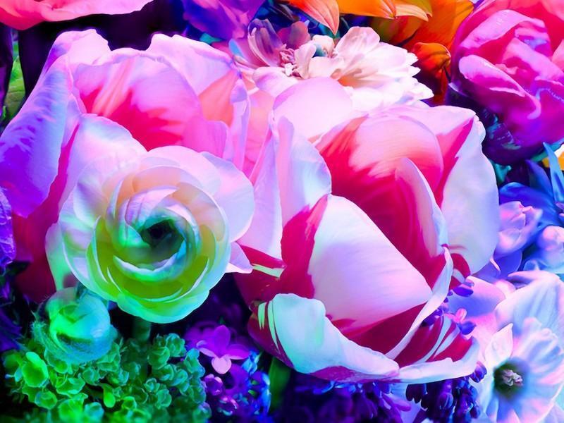 electricblossom04 Электрический цветок