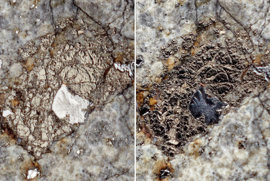 fotosesiyameteorita 2 Первые студийные фотографии Челябинского метеорита «Чебаркуль»