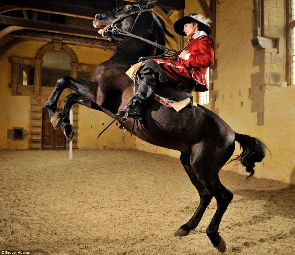 horse ballet school 6 Балетная школа для лошадей