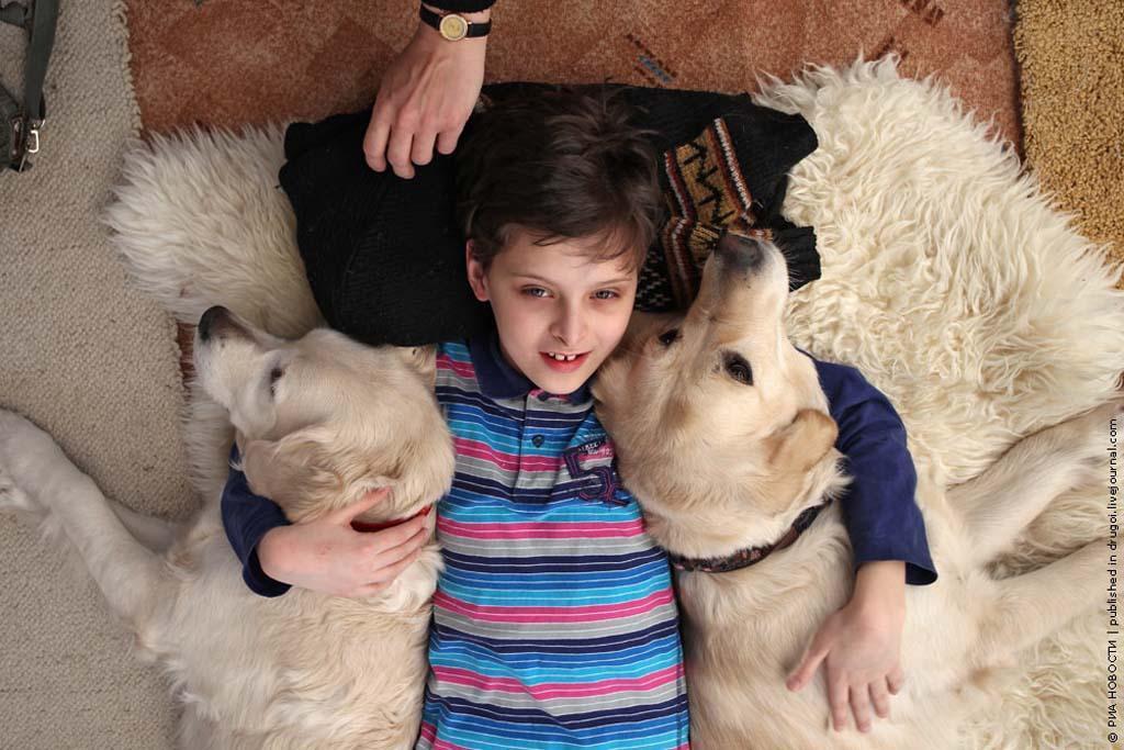 kanisterapiya 1 Канис терапия: как собаки помогают больным детям