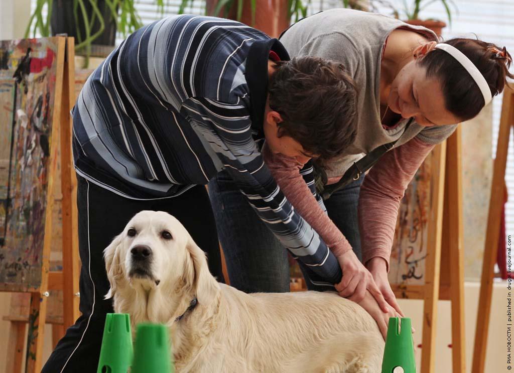 kanisterapiya 10 Канис терапия: как собаки помогают больным детям