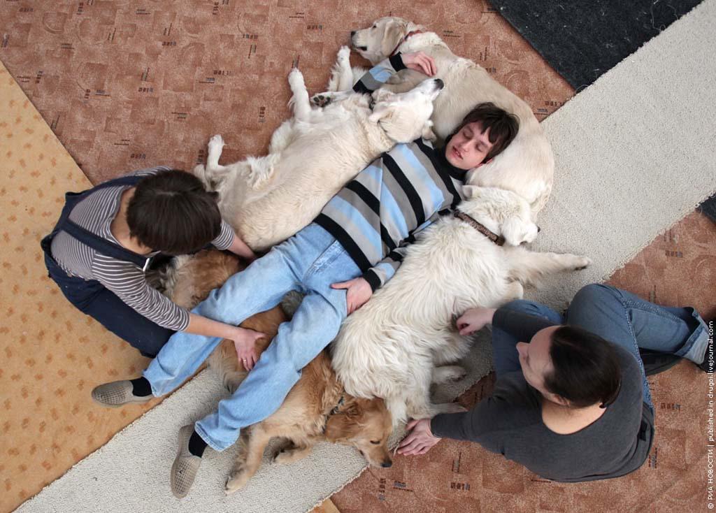 kanisterapiya 12 Канис терапия: как собаки помогают больным детям