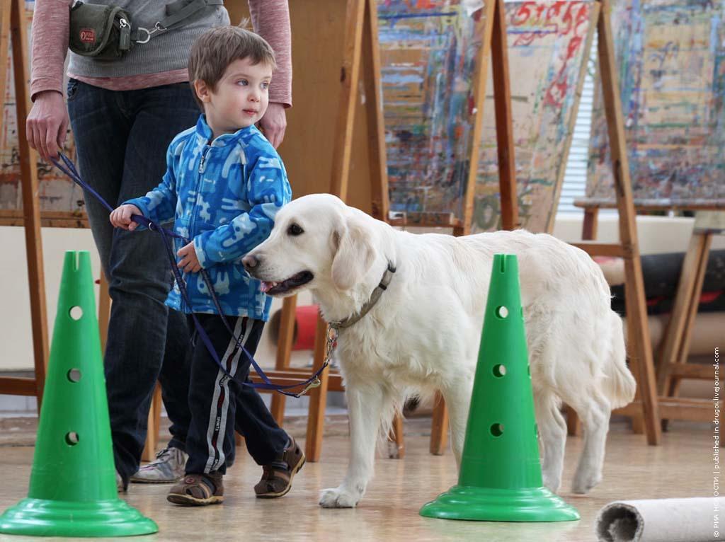 kanisterapiya 5 Канис терапия: как собаки помогают больным детям