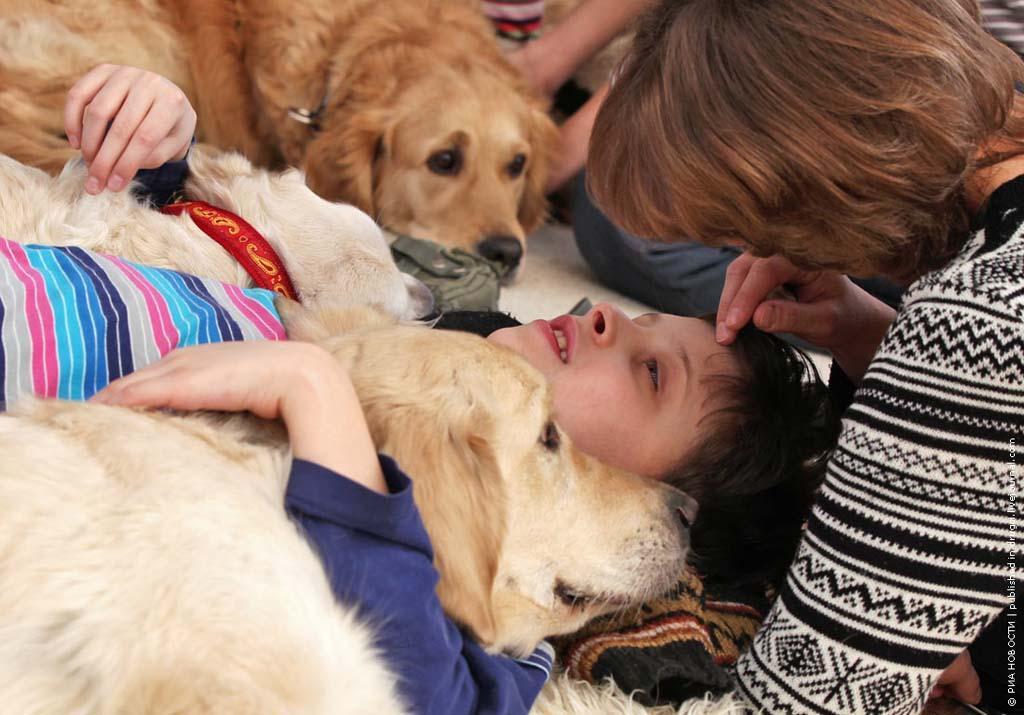 kanisterapiya 7 Канис терапия: как собаки помогают больным детям