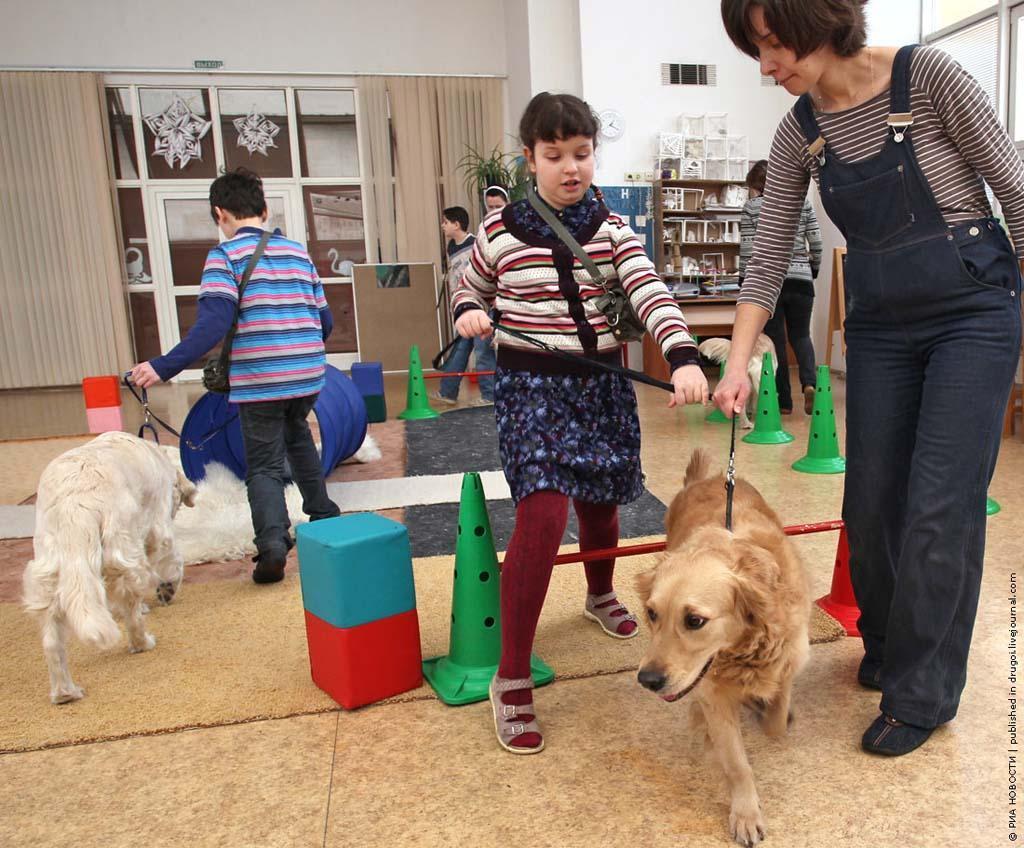 kanisterapiya 8 Канис терапия: как собаки помогают больным детям