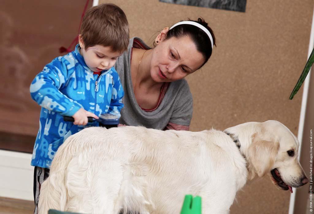 kanisterapiya 9 Канис терапия: как собаки помогают больным детям