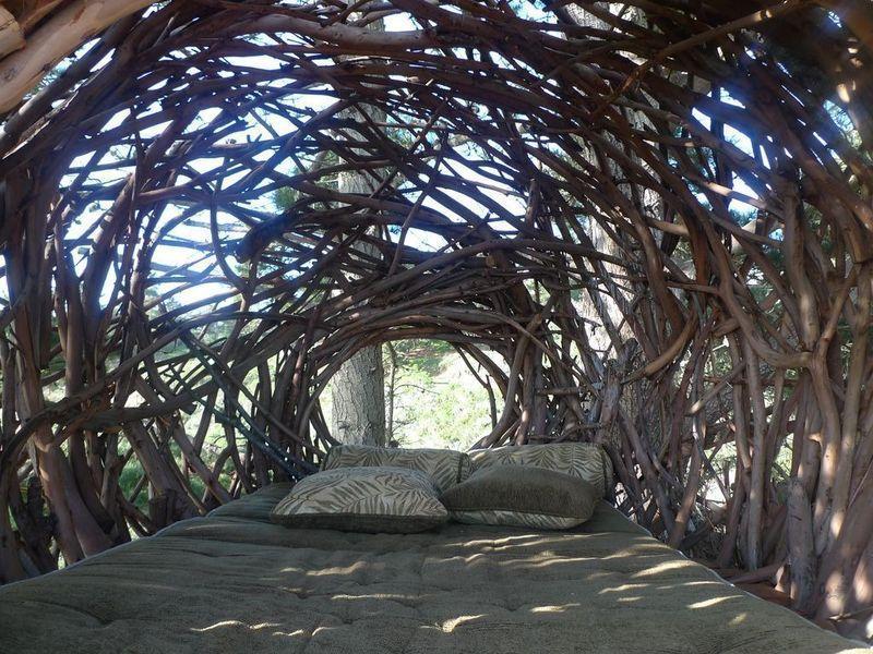 nests02 Гнезда для людей