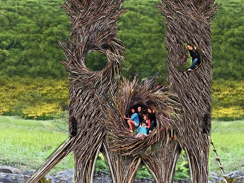 nests03 Гнезда для людей