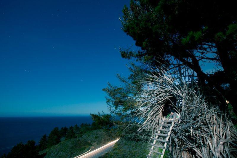 nests05 Гнезда для людей