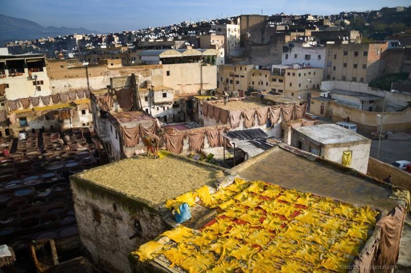 Марокко: Кожевенные мастерские Феса