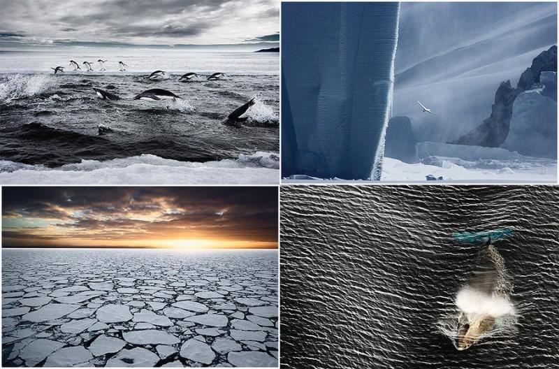 Удивительные морозные фотографии Джона Веллера