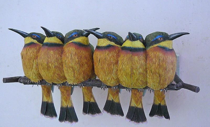 3dbird06 Невероятно реалистичные бумажные 3D птицы