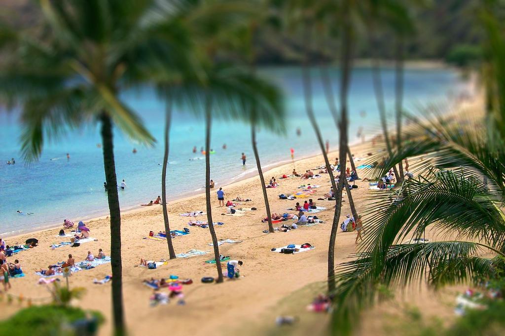 4145713252 0f1ea8b901 b Земной рай   гавайский пляж внутри древнего кратера