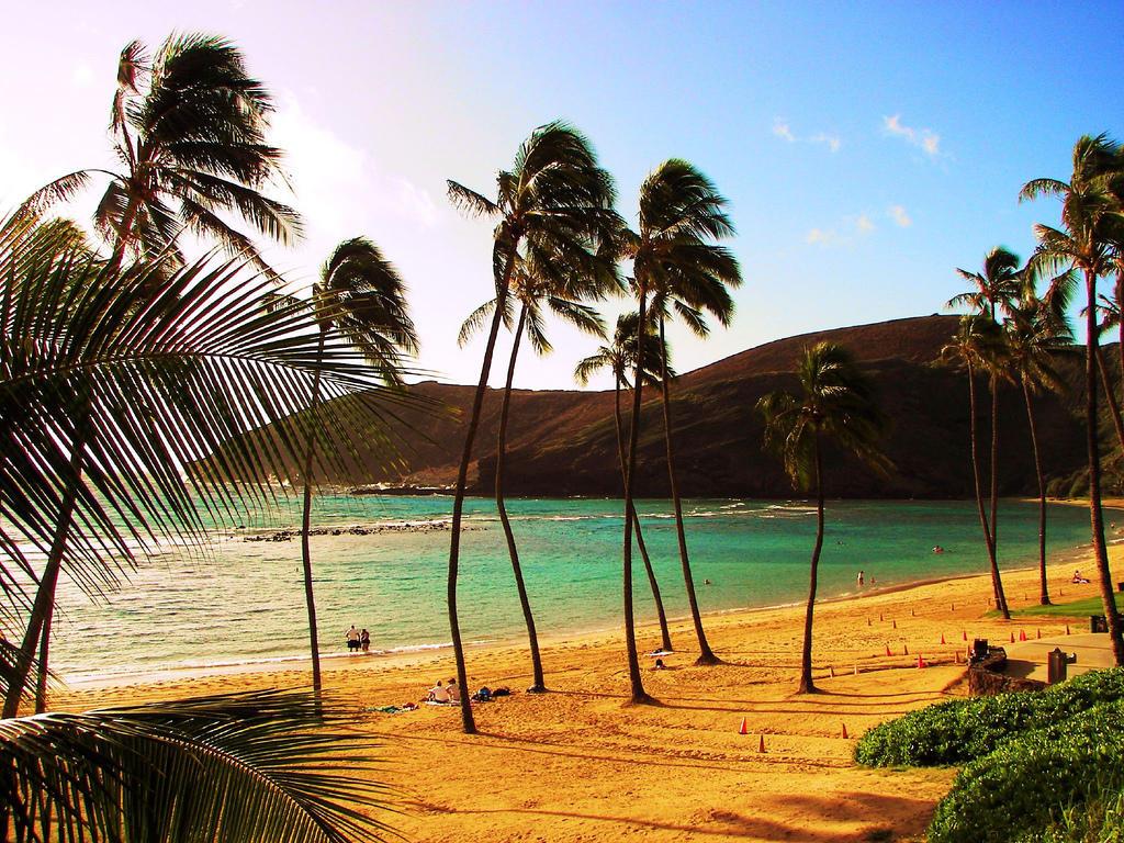95186415 034a486d5f b Земной рай   гавайский пляж внутри древнего кратера