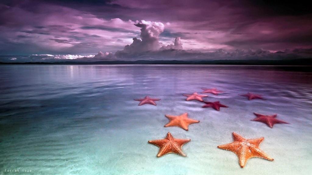 BocaDelDrago13 Пляж морских звезд — Бока дель Драго