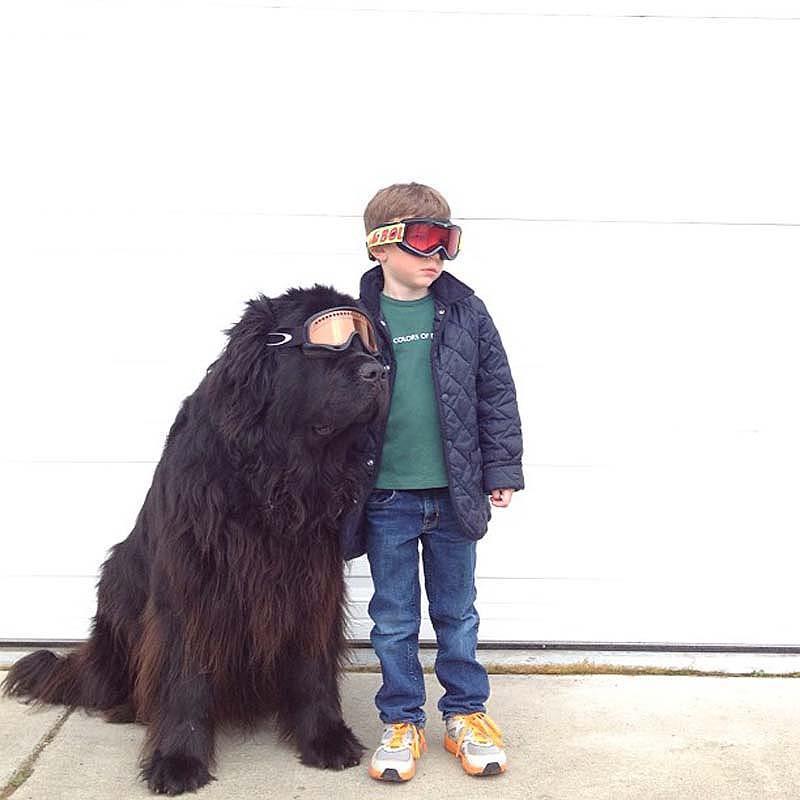 Genuine Love Between a Little Boy and His Big Dog 6 Маленький друг, большой друг