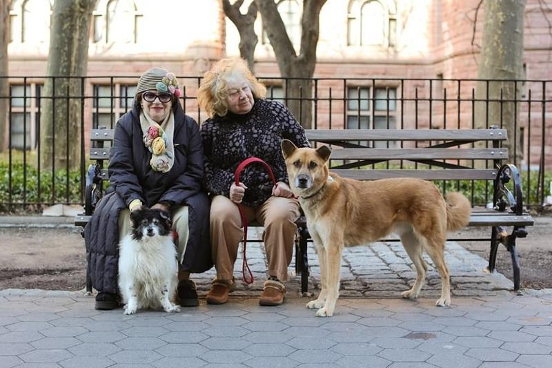 NYaged64 Старики Нью Йорка