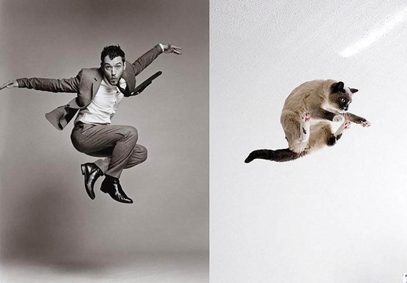 modelvscat03 Модели vs Коты