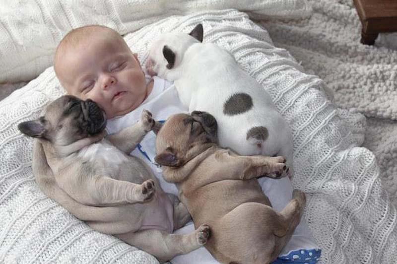 rebyonokishenki 6 Ребенок и щенки. Запредельной мимишности пост