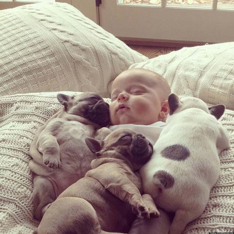 rebyonokishenki 7 Ребенок и щенки. Запредельной мимишности пост