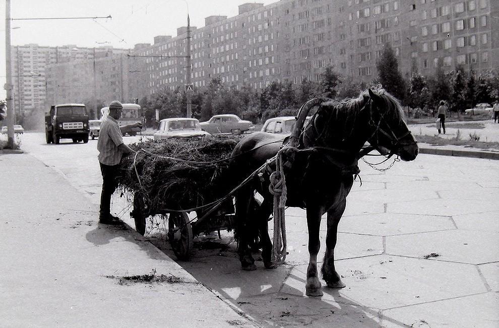 swmsk33 Москва Юго Западная, 1970 72 гг.