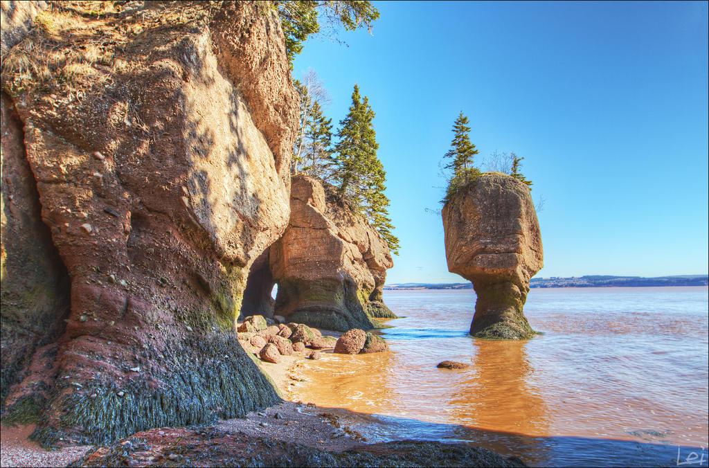 6913131774 4e22930b67 b Природное чудо   скалы Хоупвелл в заливе Фанди