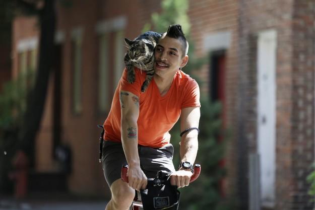 CyclistandCat03 Велосипедист и его кошка