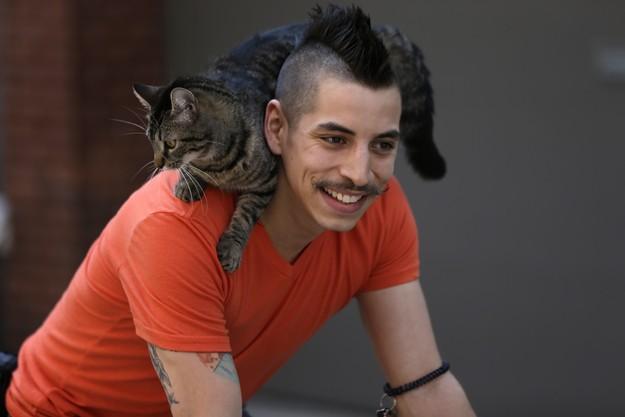 CyclistandCat17 Велосипедист и его кошка