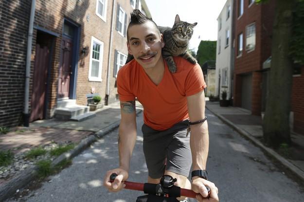 CyclistandCat19 Велосипедист и его кошка