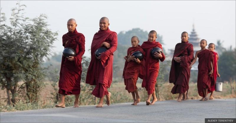 Рассвет над рисовыми полями и кормление монахов