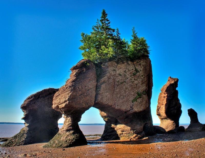 Qn6qE Природное чудо   скалы Хоупвелл в заливе Фанди